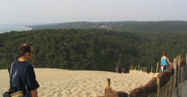 The woods of the Landes from the Pyla dune. Ocean to the left